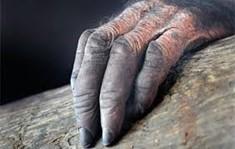 La leyenda de la mano peluda